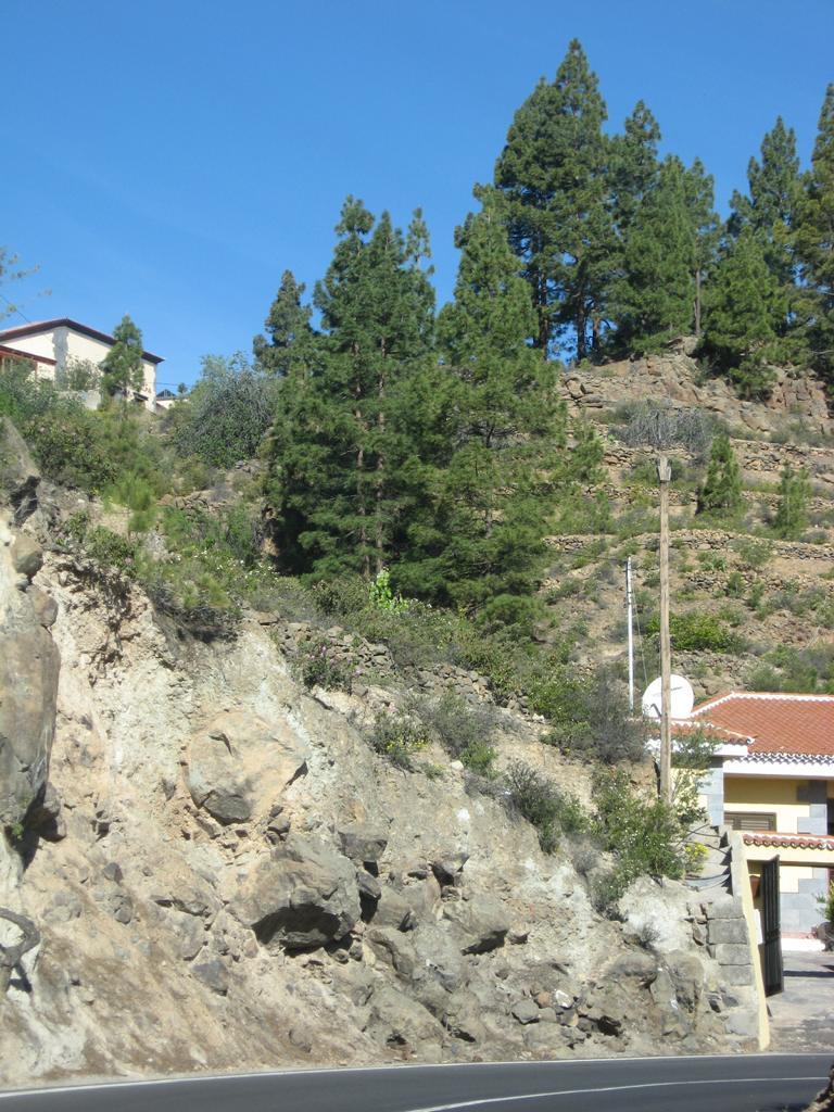 Tenerife Mai 2008 (380).JPG