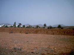 Leben auf Fuerte 2001 (49)