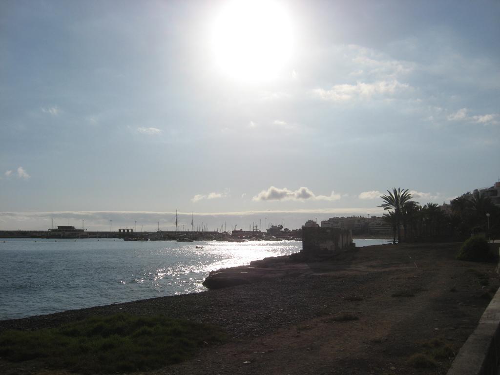 Tenerife Mai 2008 (53).JPG