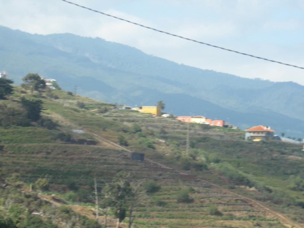 Tenerife Mai 2008 (202).JPG