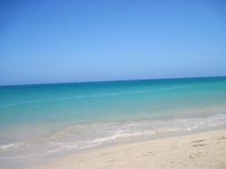 Fuerteventura Juni 2011 (99).JPG