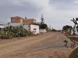 Fuerteventura Febr 2020 web (24)