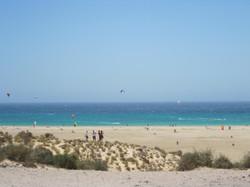 Fuerteventura Juni 2011 (85).JPG