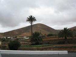 Fuerteventura Mai2009 (39).JPG
