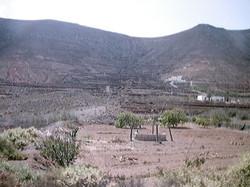 Leben auf Fuerte 2001 (100)
