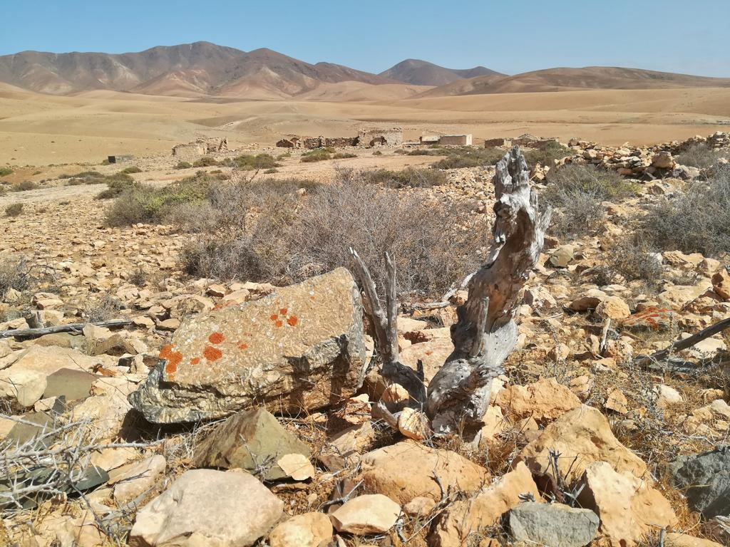 Fuerteventura 08 2018 (24)