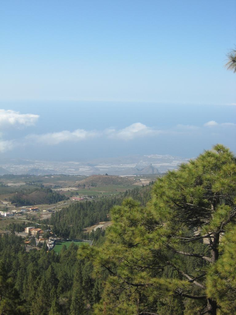 Tenerife Mai 2008 (408).JPG