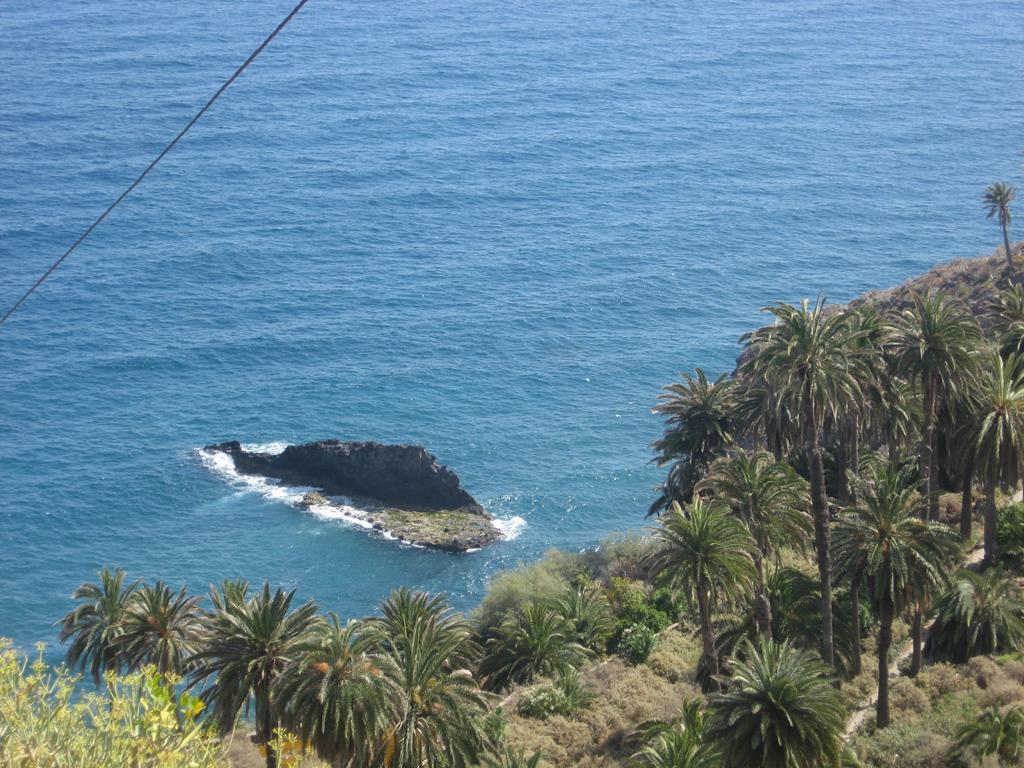 Tenerife Mai 2008 (246).JPG