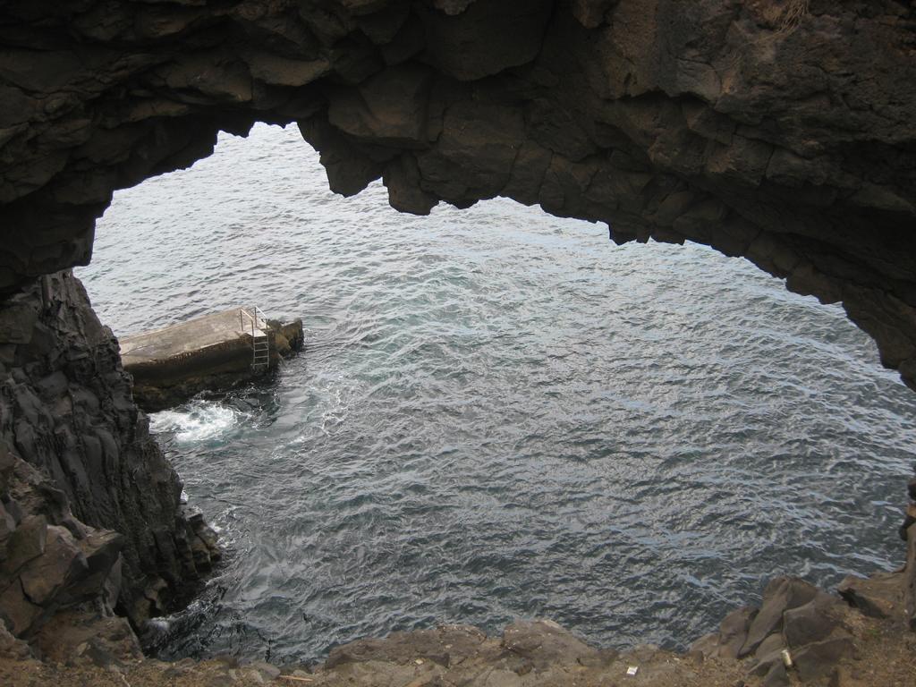 Tenerife Mai 2008 (149).JPG
