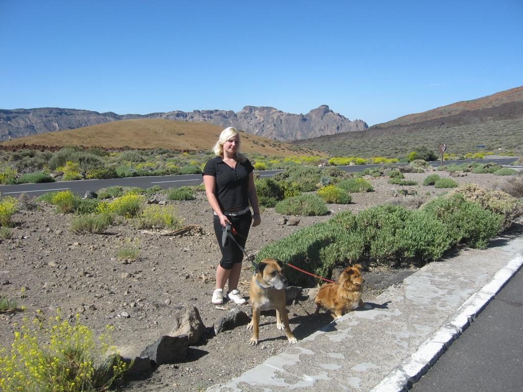 Tenerife Mai 2008 (491).JPG