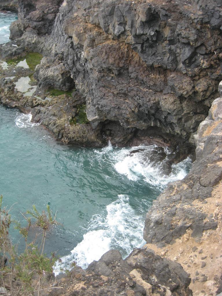 Tenerife Mai 2008 (99).JPG