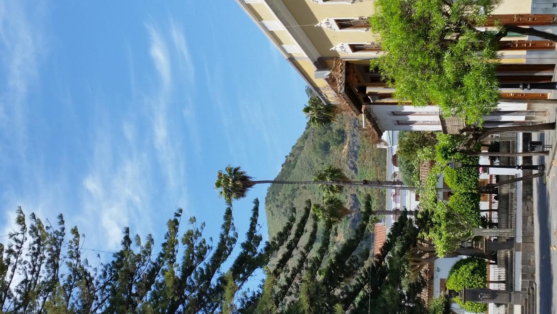Gran Canaria Mai 2015 (39).JPG