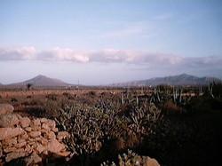 Leben auf Fuerte 2001 (128)