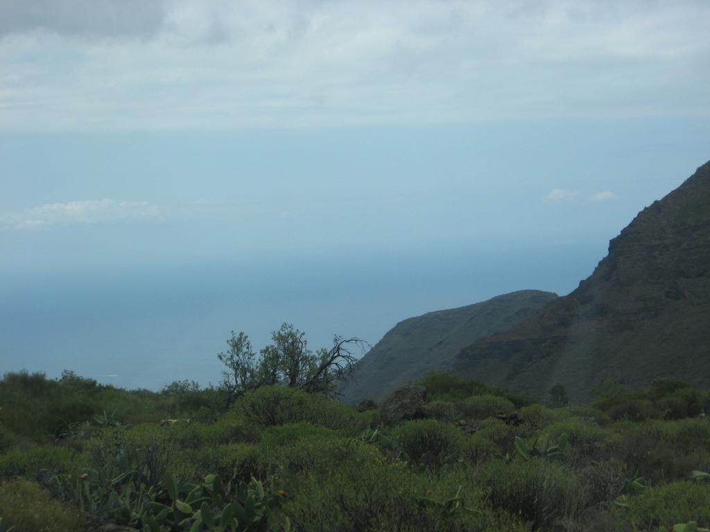 Tenerife Mai 2008 (296).JPG