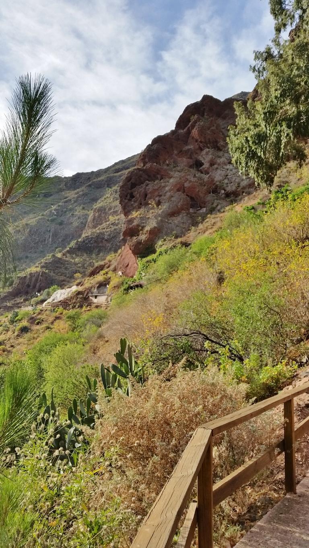 Gran Canaria Mai 2015 (9).JPG