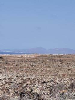 Fuerteventura Febr 2020 web (116)