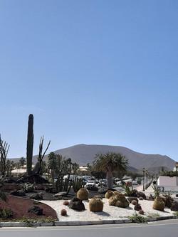 Fuerteventura Febr 2020 web (127)
