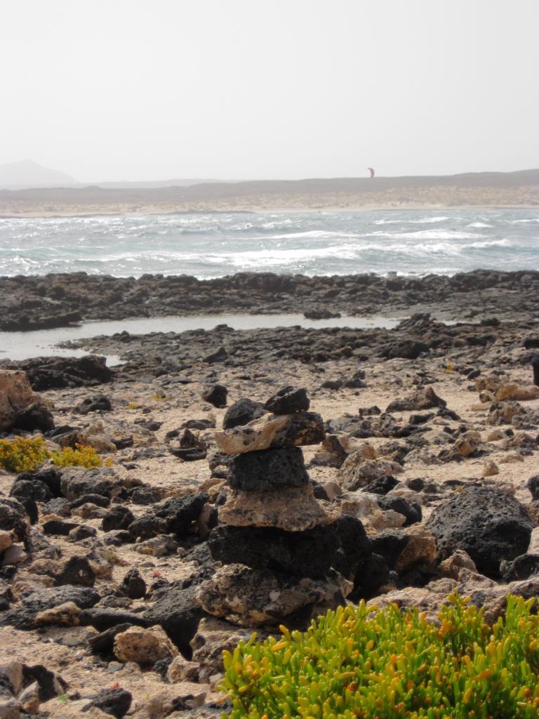 Fuerteventura Juni 2011 (8).JPG