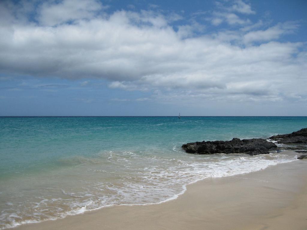 Fuerteventura Mai2009 (18).JPG