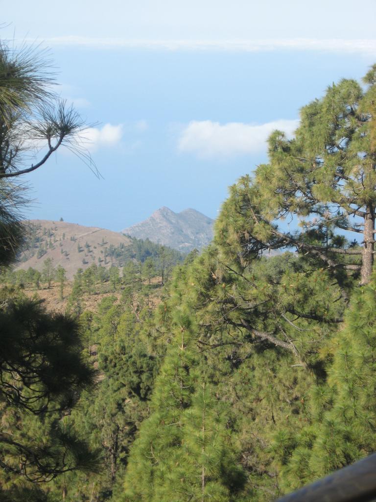 Tenerife Mai 2008 (400).JPG