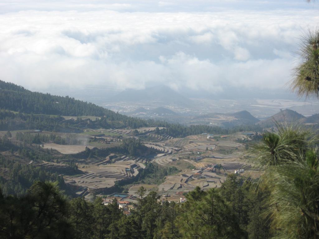 Tenerife Mai 2008 (403).JPG