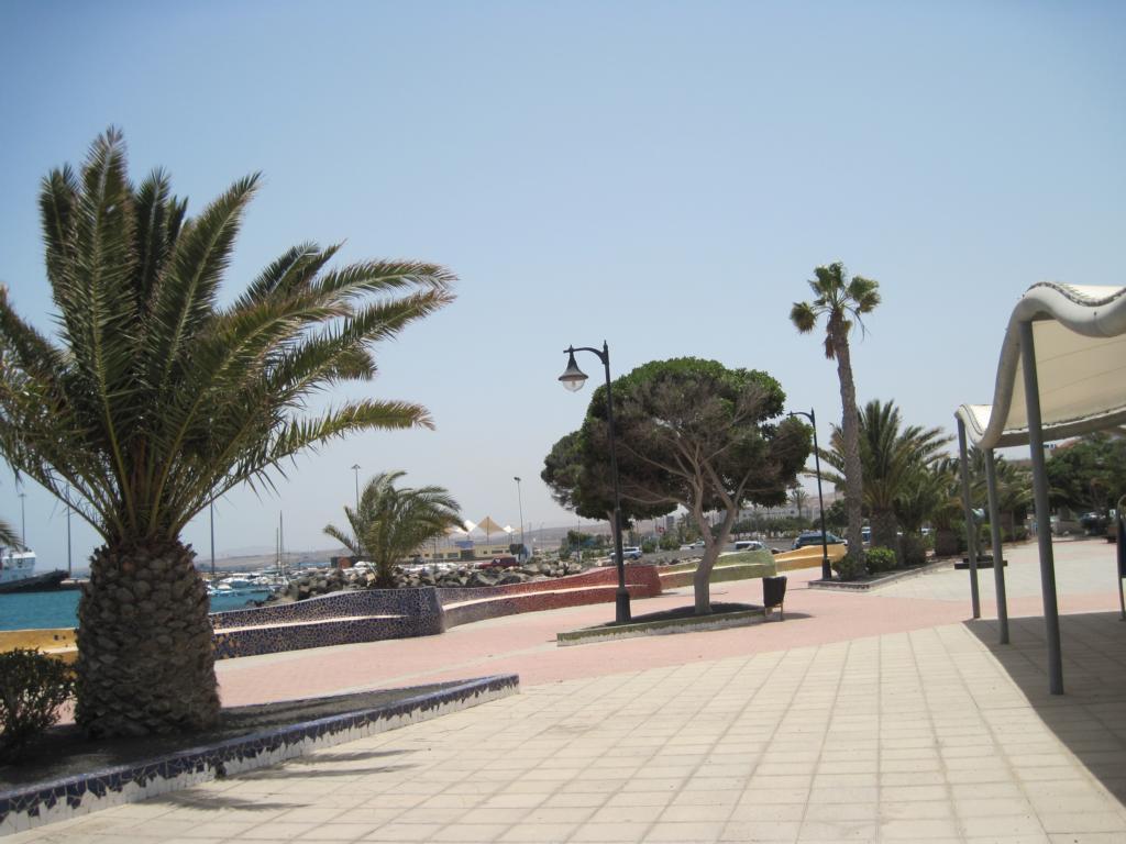 Fuerteventura Juni 2011 (20).JPG