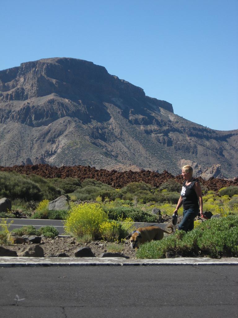 Tenerife Mai 2008 (490).JPG