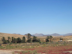 Fuerteventura Juni 2011 (62).JPG