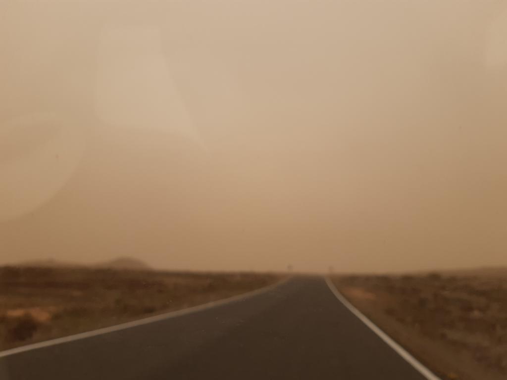 Fuerteventura Febr 2020 web (53)