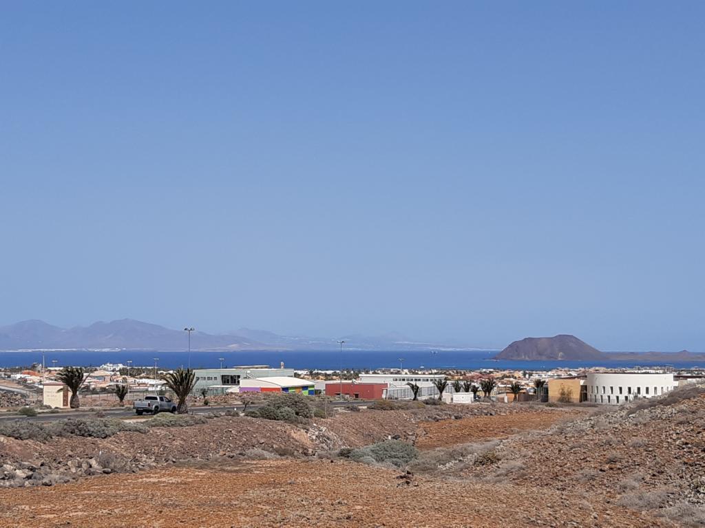 Fuerteventura Febr 2020 web (113)