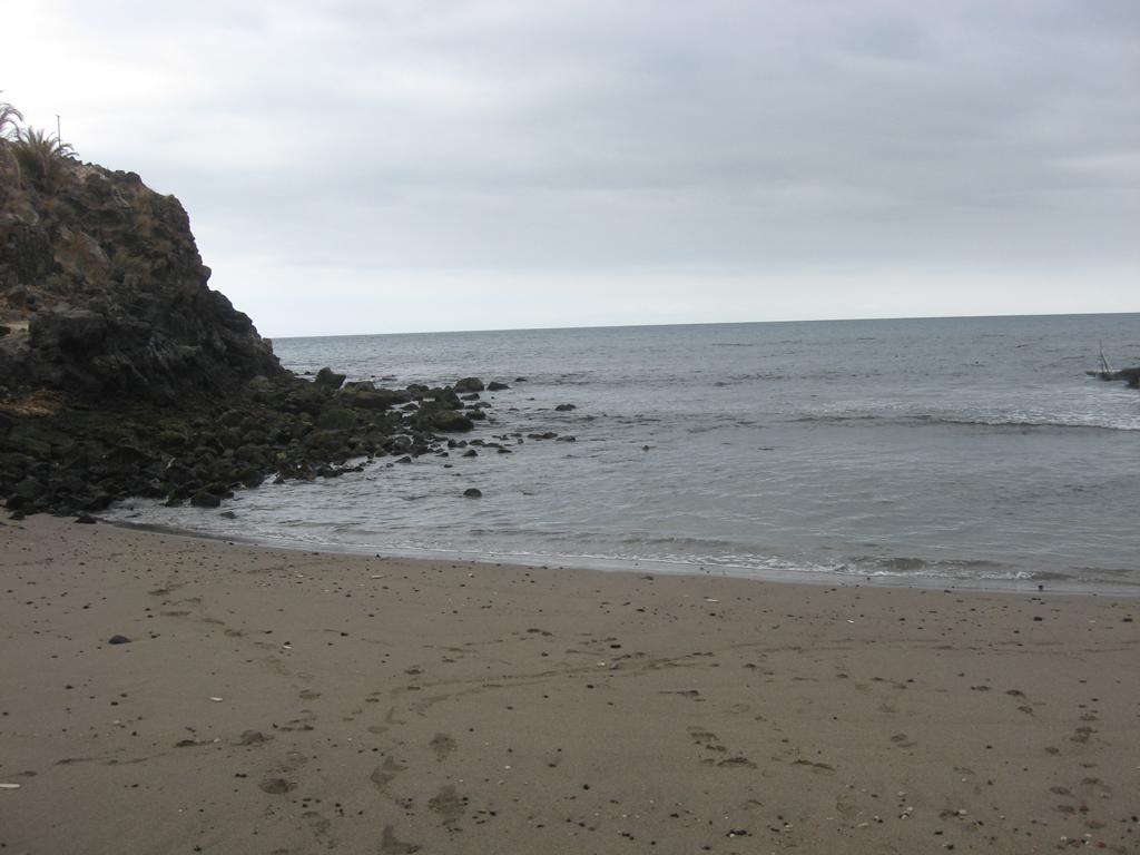 Tenerife Mai 2008 (109).JPG