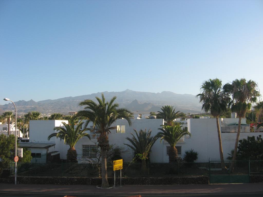 Tenerife Mai 2008 (336).JPG