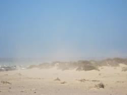 Fuerteventura Juni 2011 (87).JPG