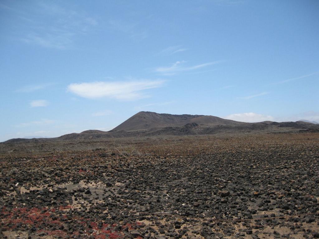Fuerteventura Mai2009 (80).JPG