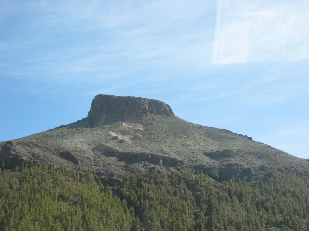 Tenerife Mai 2008 (420).JPG