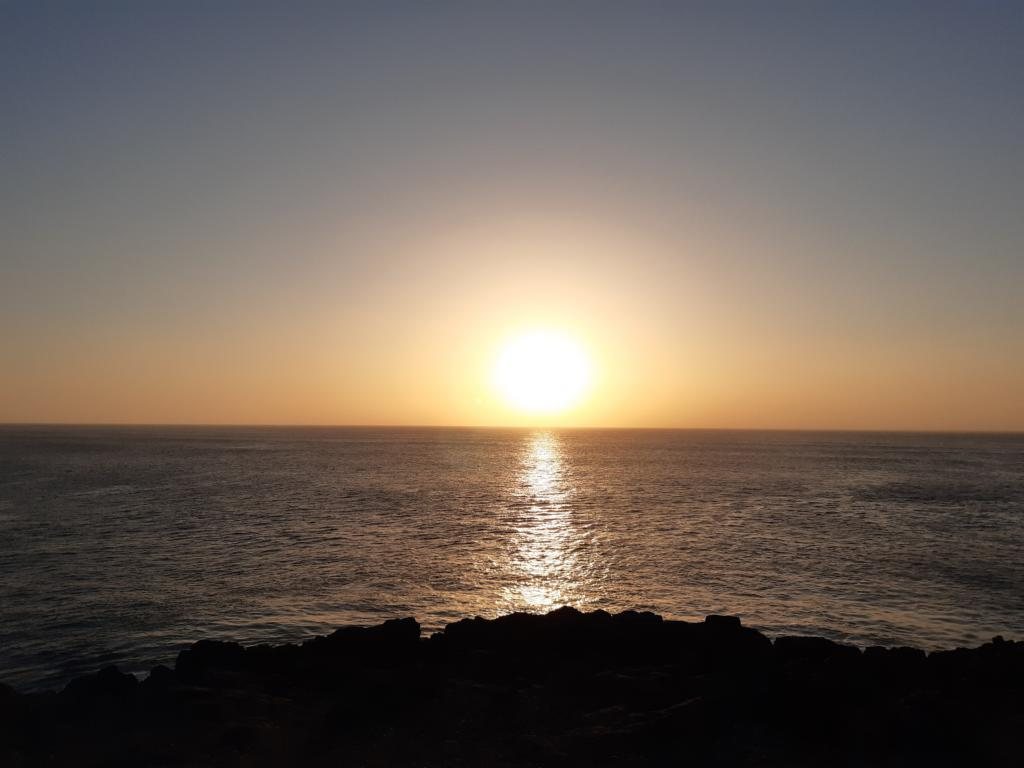 Fuerteventura Febr 2020 web (36)