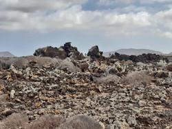 Fuerteventura Febr 2020 web (96)