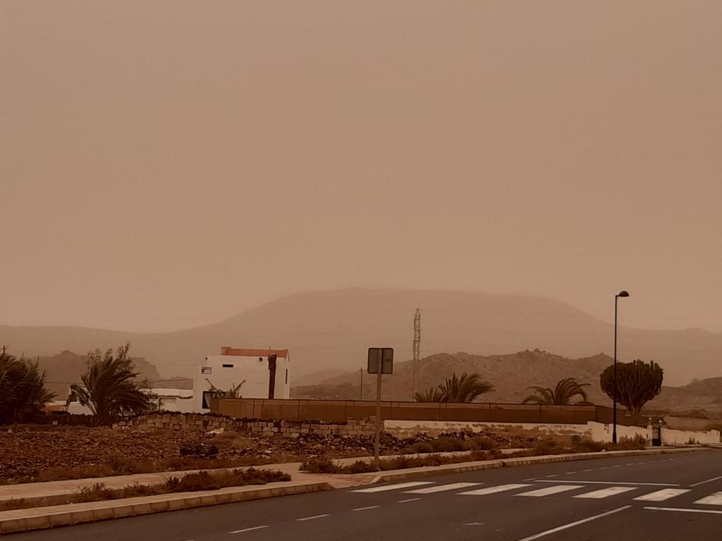 Fuerteventura Febr 2020 web (70)