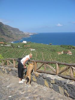 Tenerife Mai 2008 (249).JPG