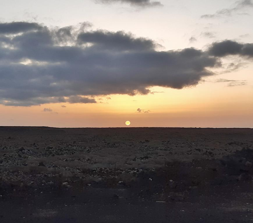 Fuerteventura Febr 2020 web (32)