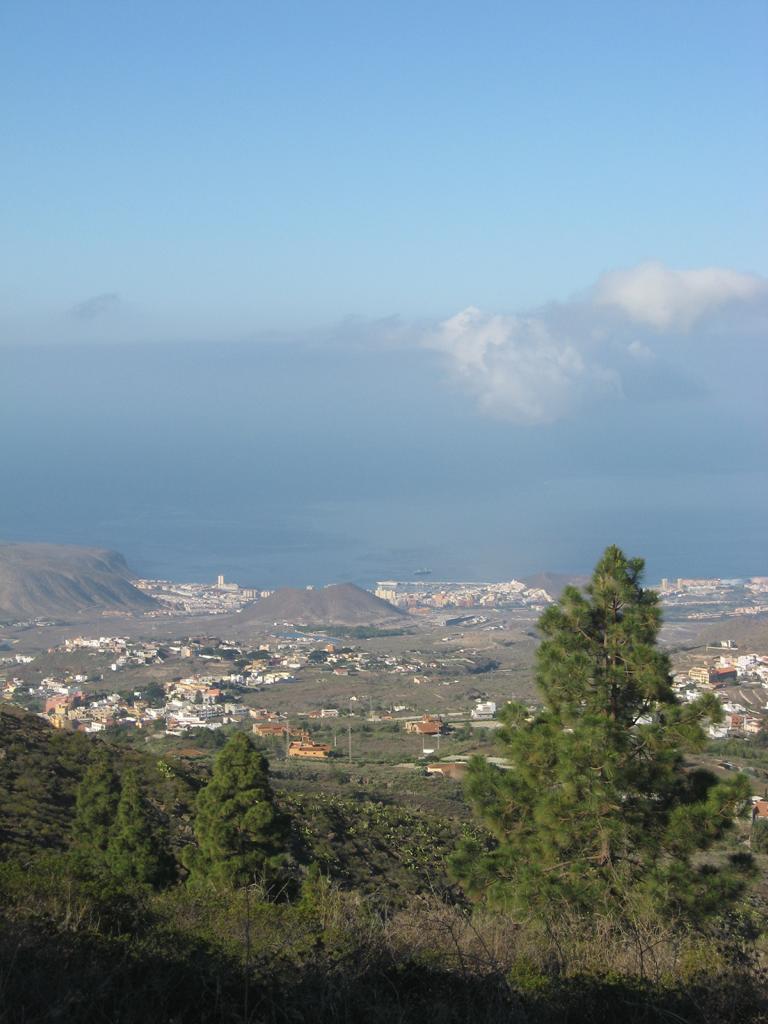 Tenerife Mai 2008 (364).JPG
