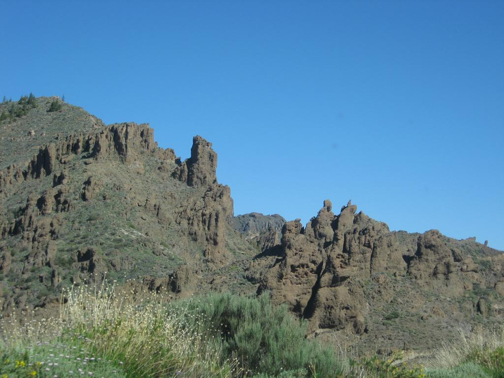 Tenerife Mai 2008 (427).JPG