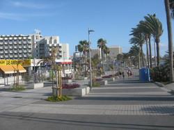 Tenerife Mai 2008 (131).JPG