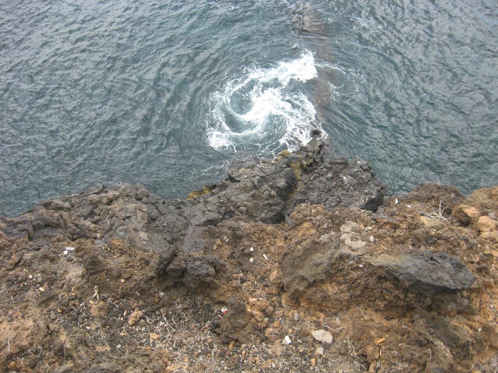 Tenerife Mai 2008 (146).JPG