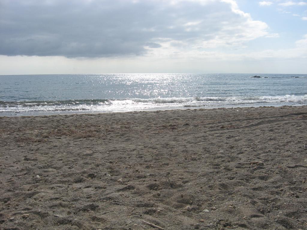 Tenerife Mai 2008 (123).JPG