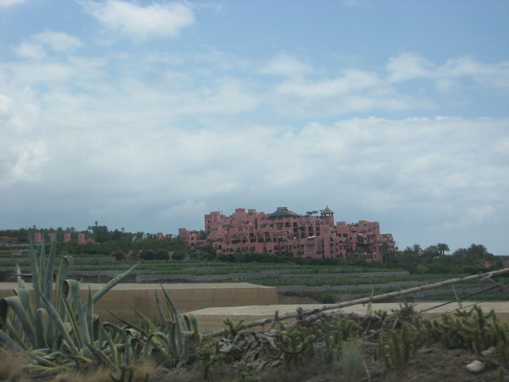 Tenerife Mai 2008 (317).JPG