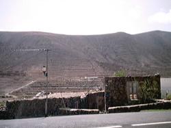 Leben auf Fuerte 2001 (99)