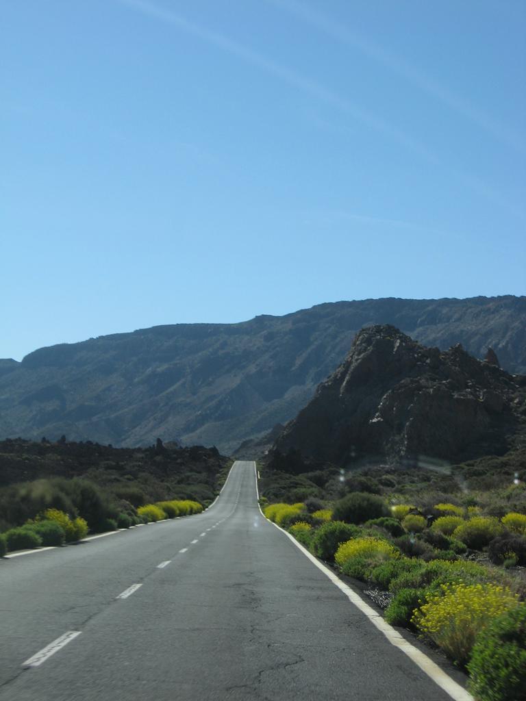 Tenerife Mai 2008 (446).JPG