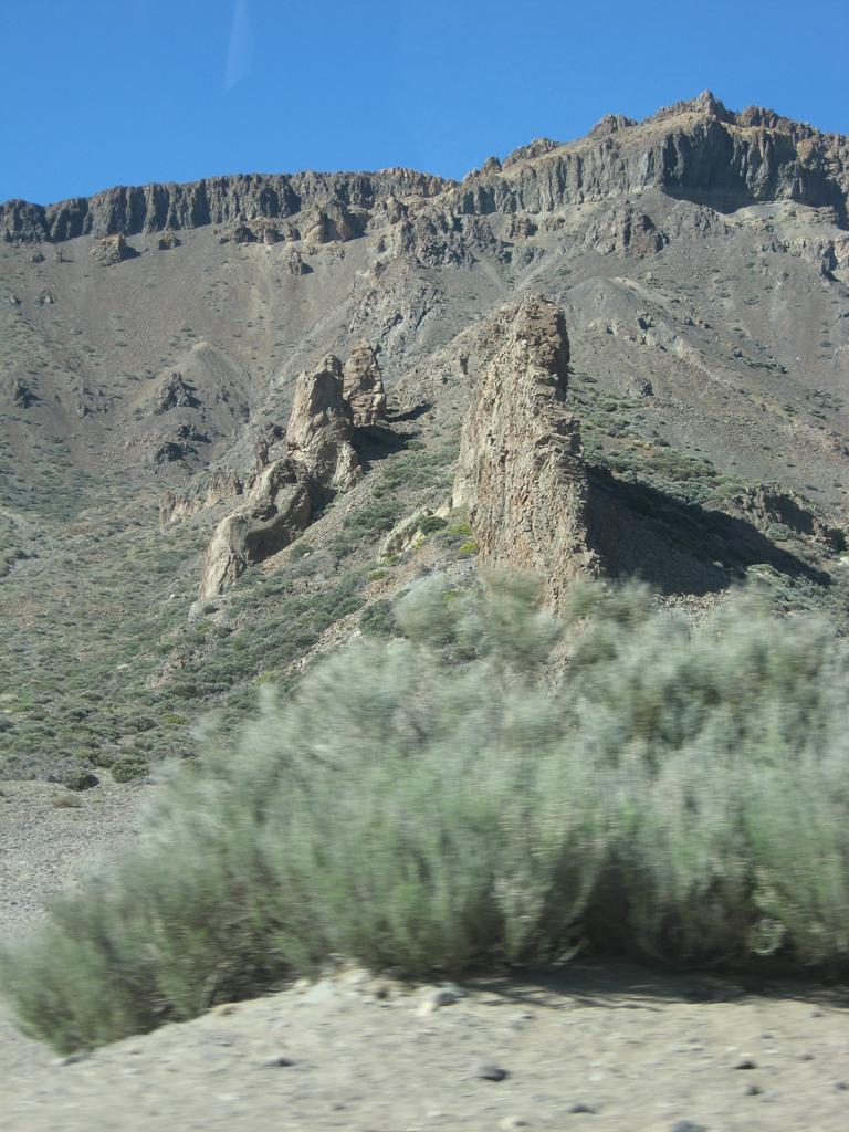 Tenerife Mai 2008 (458).JPG