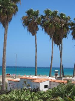 Fuerteventura Juni 2011 (98).JPG
